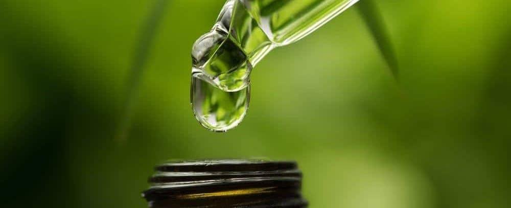 Cannabisöl gegen Krebs